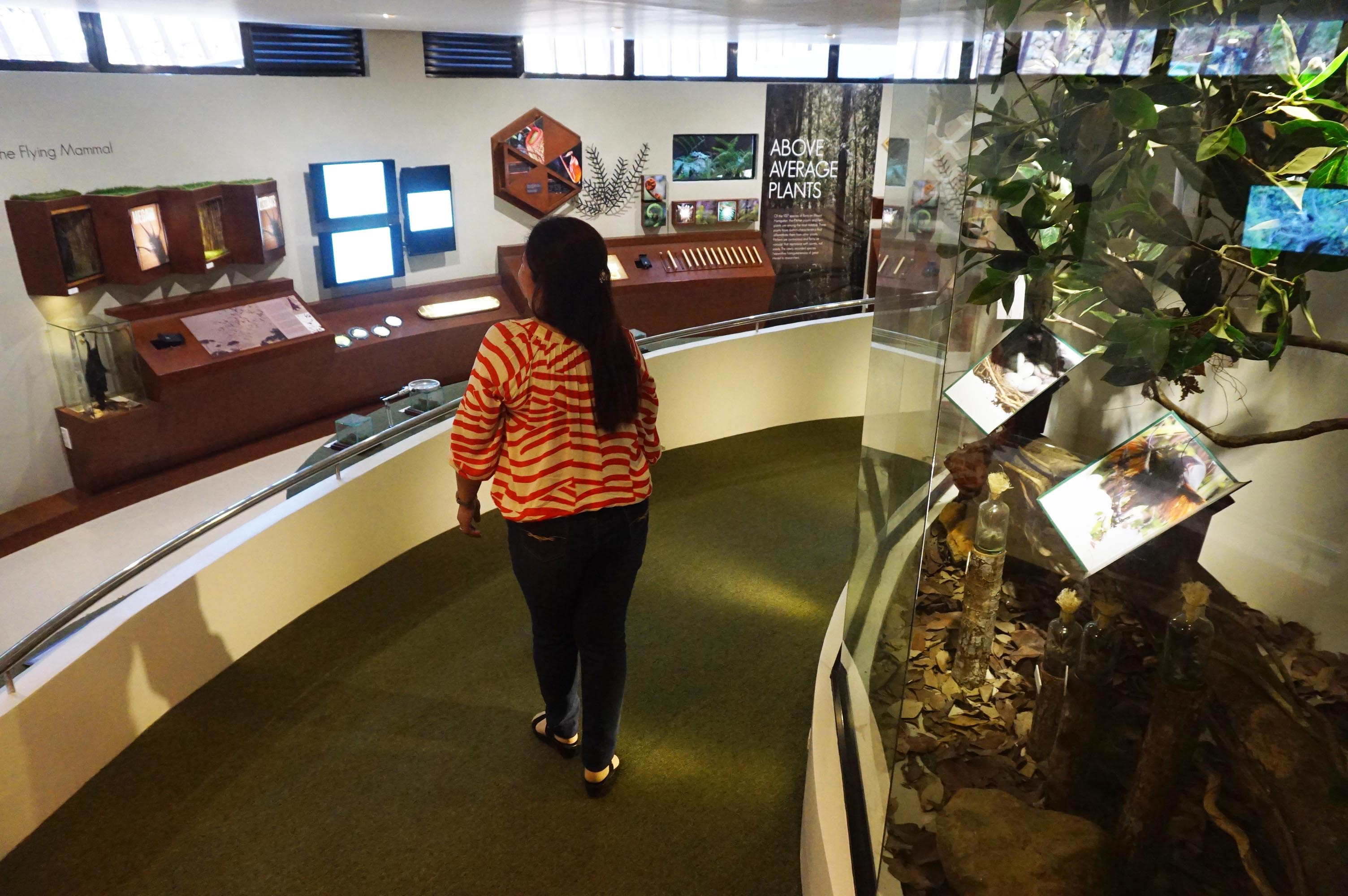 The museum is divided into different sections, all neatly arranged in the two-storey building. Photo by Louie Lapat