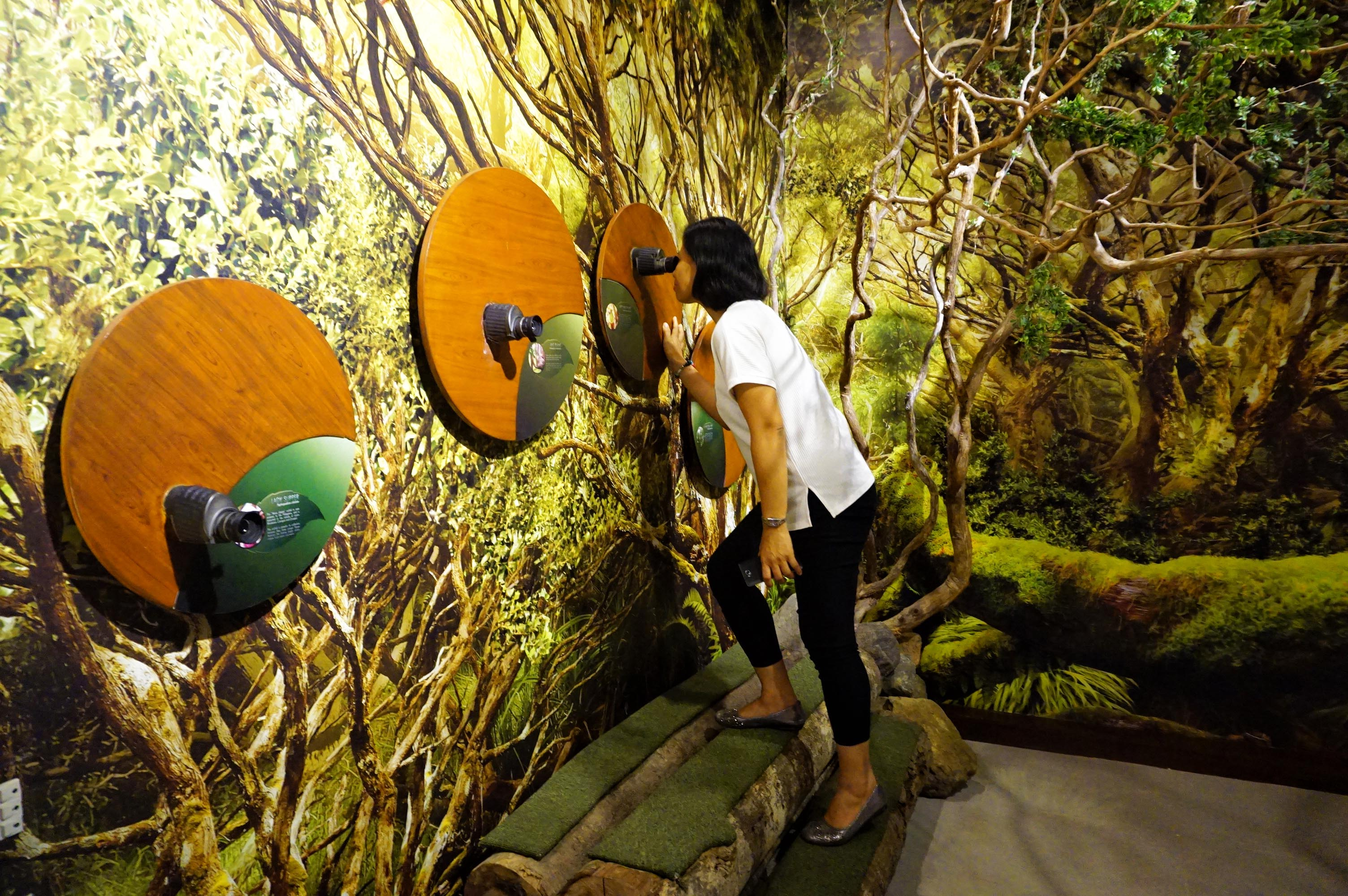 Those wanting to see up close Mt. Hamiguitan can do so with the opening of the Natural Science Museum constructed by the provincial government of Davao Oriental. Photo by Louie Lapat