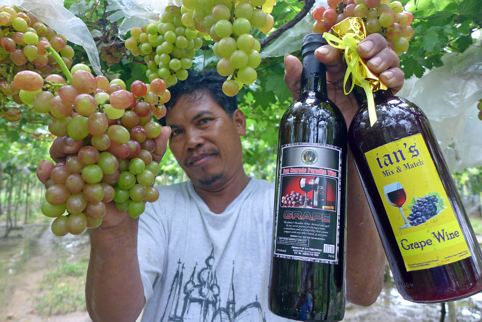 FRUITS OF LABOR. Grape farmer Sonny  Bauang, shows his fresh grapes and local wines produced from them. Photo by Mau Victa