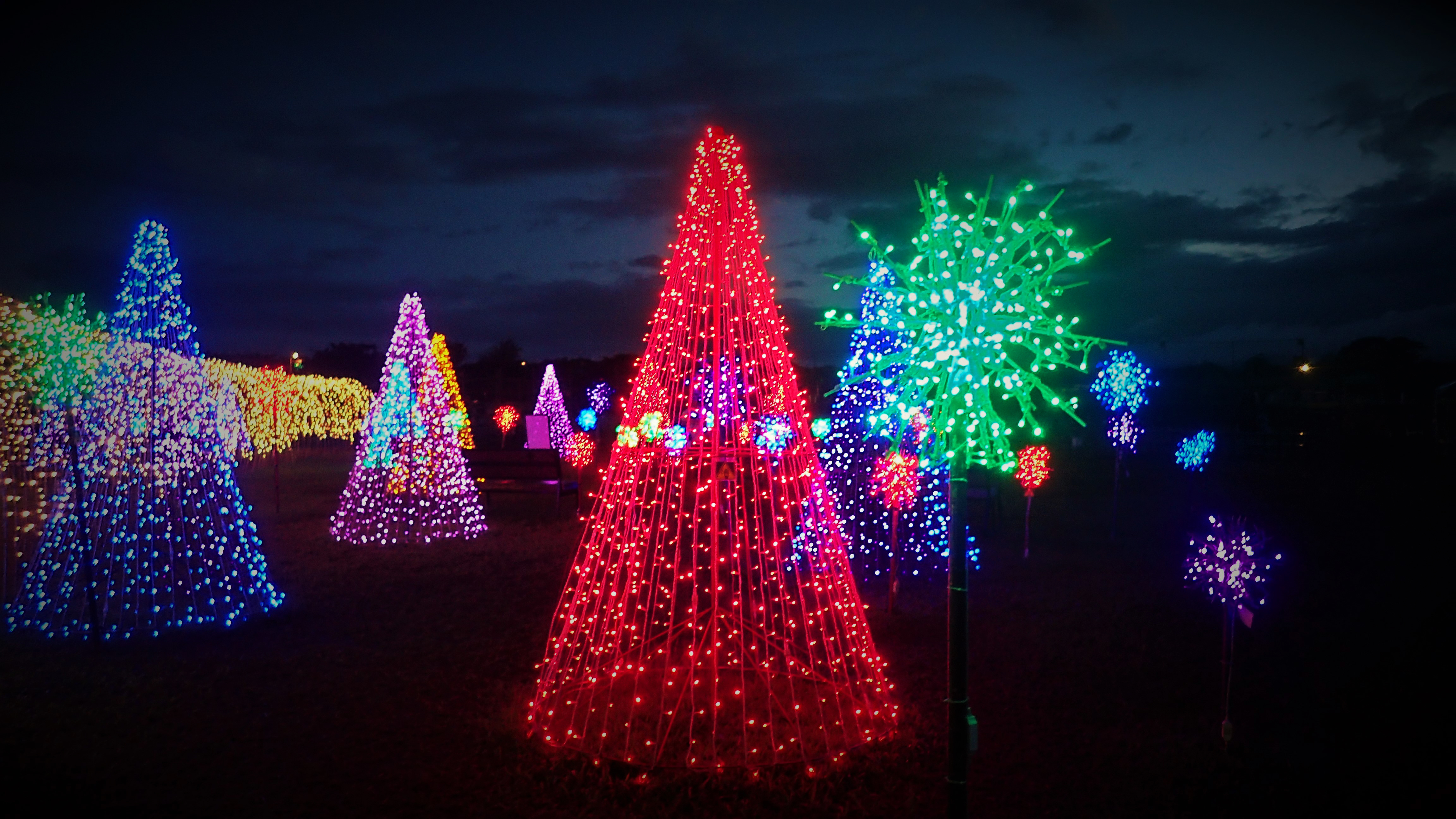 CHRISTMAS TREES. Christmas trees stand in different colors outside the tunnel.