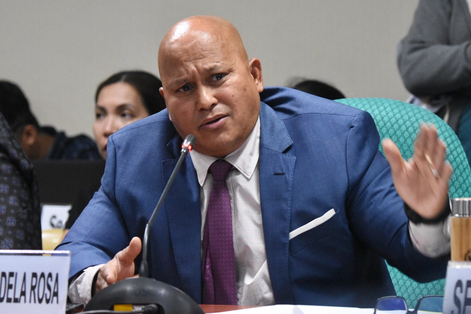 HELP. Senator Ronald dela Rosa asks help from the Commission on Human Rights. File photo by Angie De Silva/Rappler