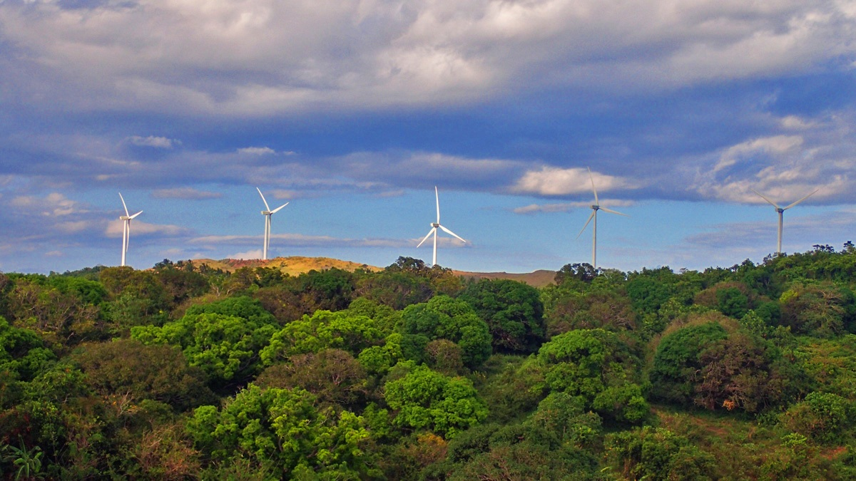 WIND AND HILLS. Pilillau2019s turbines powered by the wind stand out above the lush green hills.