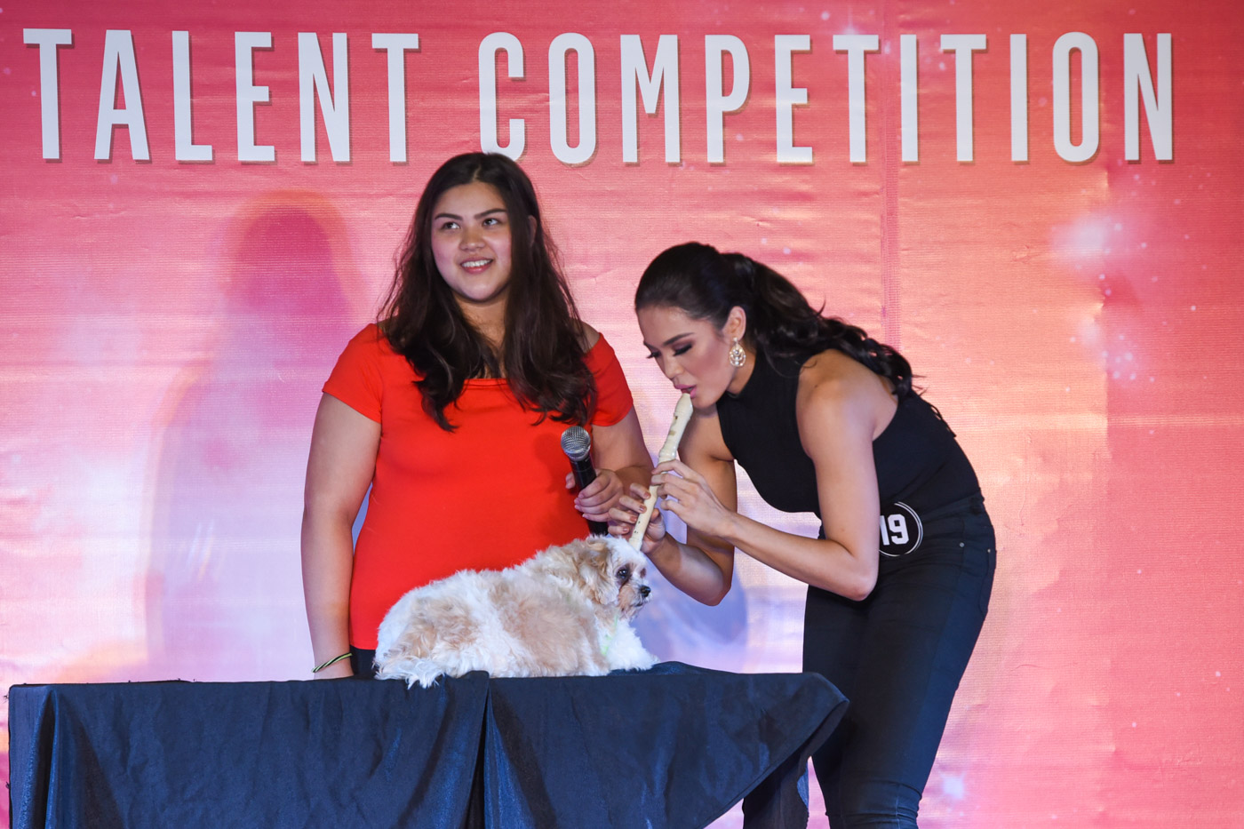 TALENT. Michele plays the flute as she tries to make her dog bark and sing. File photo by Alecs Ongcal/Rappler