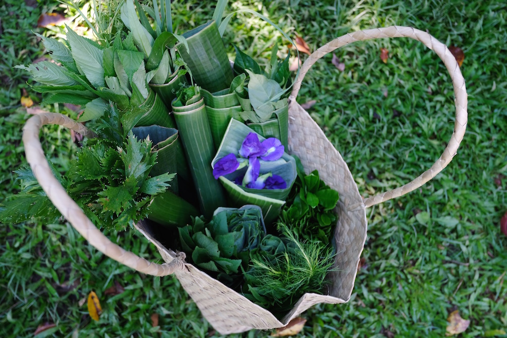 HARVEST BASKET. The dayu2019s yield includes butterfly pea flowers, celery, amaranth, talenum, saluyot, and lemongrass, among others. Photo by Audrey N. Carpio