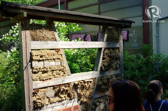 BEE HOTEL. This structure is a bee hotel meant to house the insects that are in danger due to the changing climate