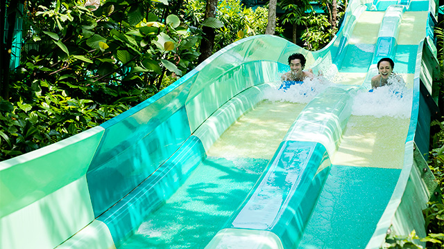 LEARNING THROUGH EXPERIENCE. Encounter marine life as you have a full day of fun in the sun at Adventure Cove Waterpark
