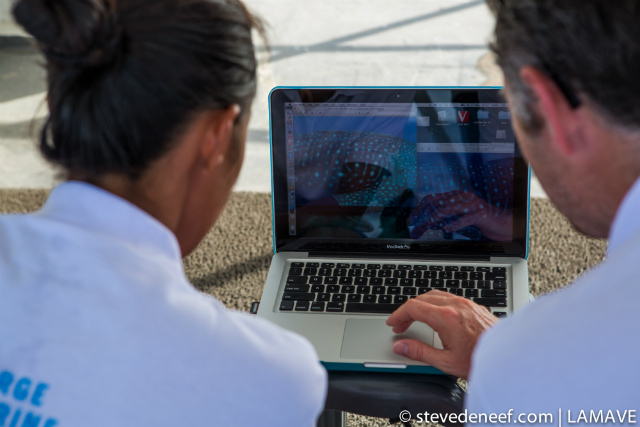 PHOTO ID. Dr Simon Pierce and LAMAVE researcher Jessica Labaja compare spot patterns of whale sharks encountered during Expedition Shark. Steve de Neef/LAMAVE