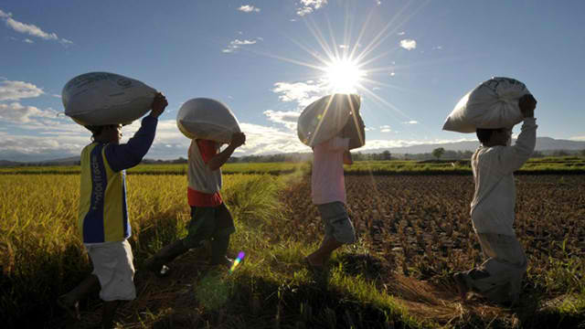 RURAL POOR. Land reform, the coco levy fund, and the national land use act continue to be issues for farmers. Photo by Jay Directo/Agence France-Presse