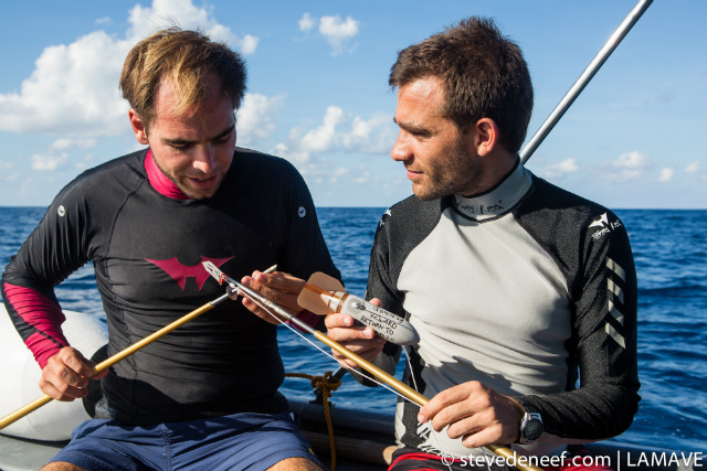 TAGS. Gonzalo Araujo and Dr Alessandro Ponzo prepare a SPOT tag ready for deployment on a whale shark. Steve de Neef/LAMAVE