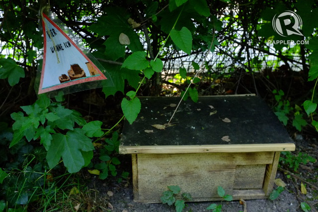 HOME FOR CRITTERS. Students helped make this 'hedgehog house'