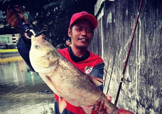 TOXIC. Fish returns to the Pasig River, but they can't be eaten just yet. Photo from PRRC