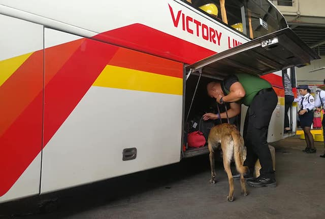 K-9 SCANS. The Philippine Drug Enforcement Agency also inspects terminals for illegal drugs possibly inside passengers' luggage. Photo from PDEA
