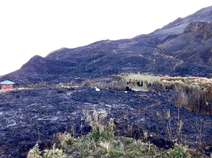 TORCHED. Mount Pulag has been closed off from hikers after a grassland fire. BFP file photo