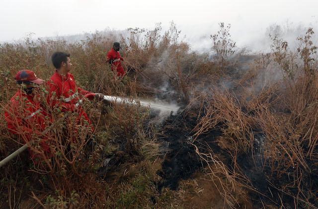 BAKAR HUTAN. Petugas pemadam kebakaran menjinakkan api di Ogan Komering Ilir, Sumatera Utara, 14 September 2015. Foto oleh Adi Weda/EPA
