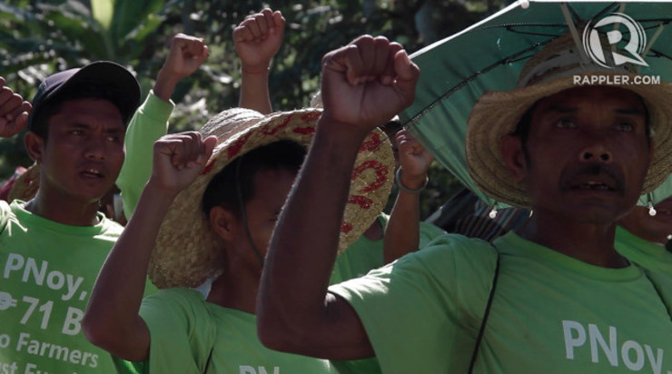 JUSTICE FOR FARMERS. A 2012 Supreme Court decision declares that the P71-billion coco levy funds must be used for programs directly benefiting coconut farmers. This was enforced, however, in 2014 when the SC issued an Entry of Judgment.