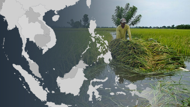 GEOGRAPHY. Southeast Asia's diverse geography also produces differences in rice production. Image courtesy of Alyssa Arizabal/Rappler