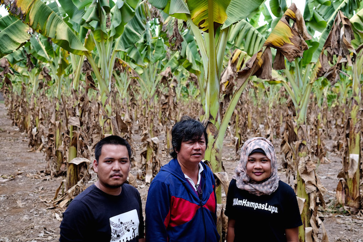 DROUGHT'S DAMAGE. Youth campaigners and a municipal agriculturist witness the severity of damage in a banana plantation in North Cotabato due to the drought brought by El Niu00f1o. Photo courtesy of Veejay Villafranca/Greenpeace