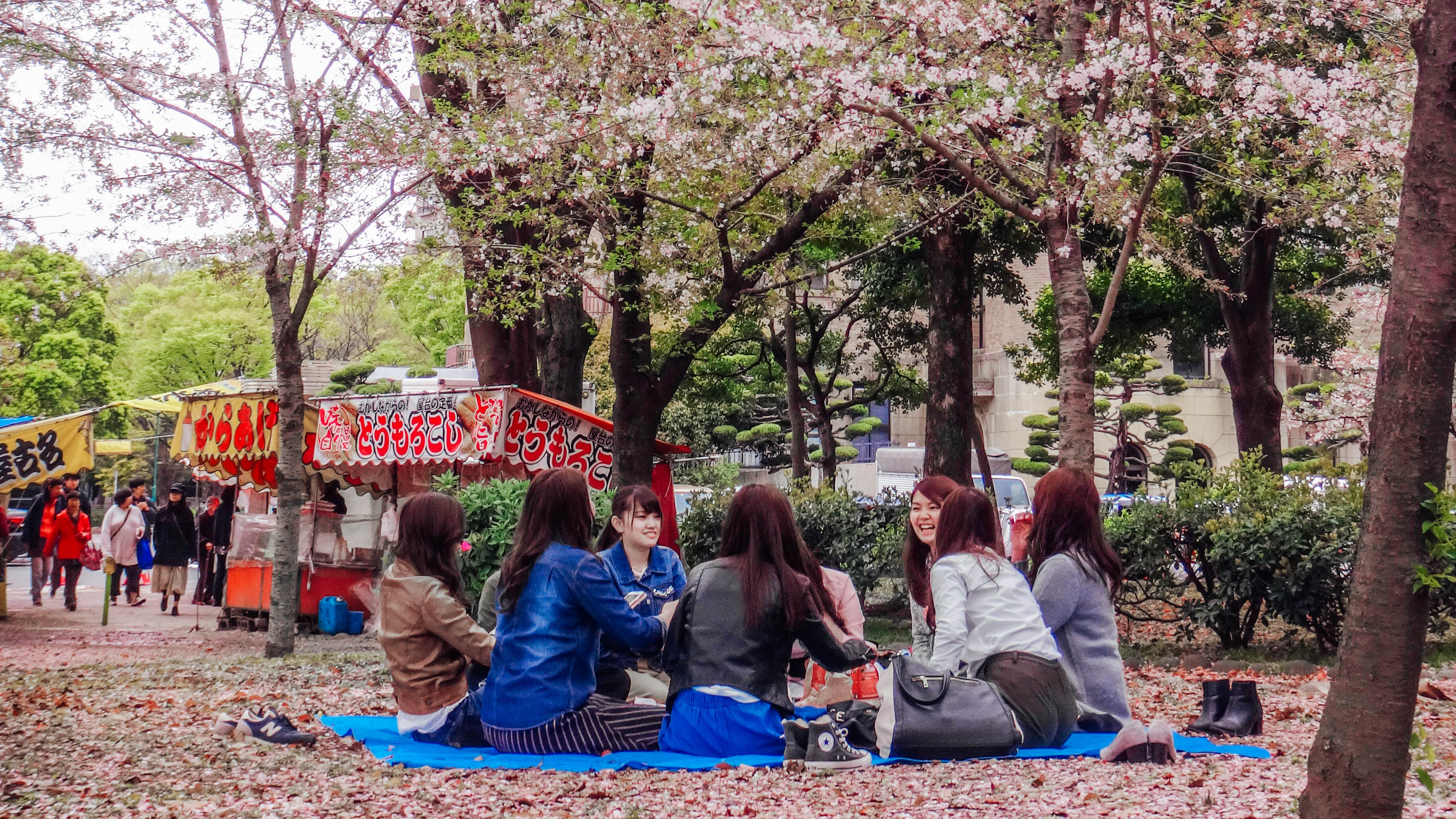 GATHER 'ROUND. Tsuruma Park, one of many beautiful sakura viewing spots in Japan. Photo provided by Irene Maligat