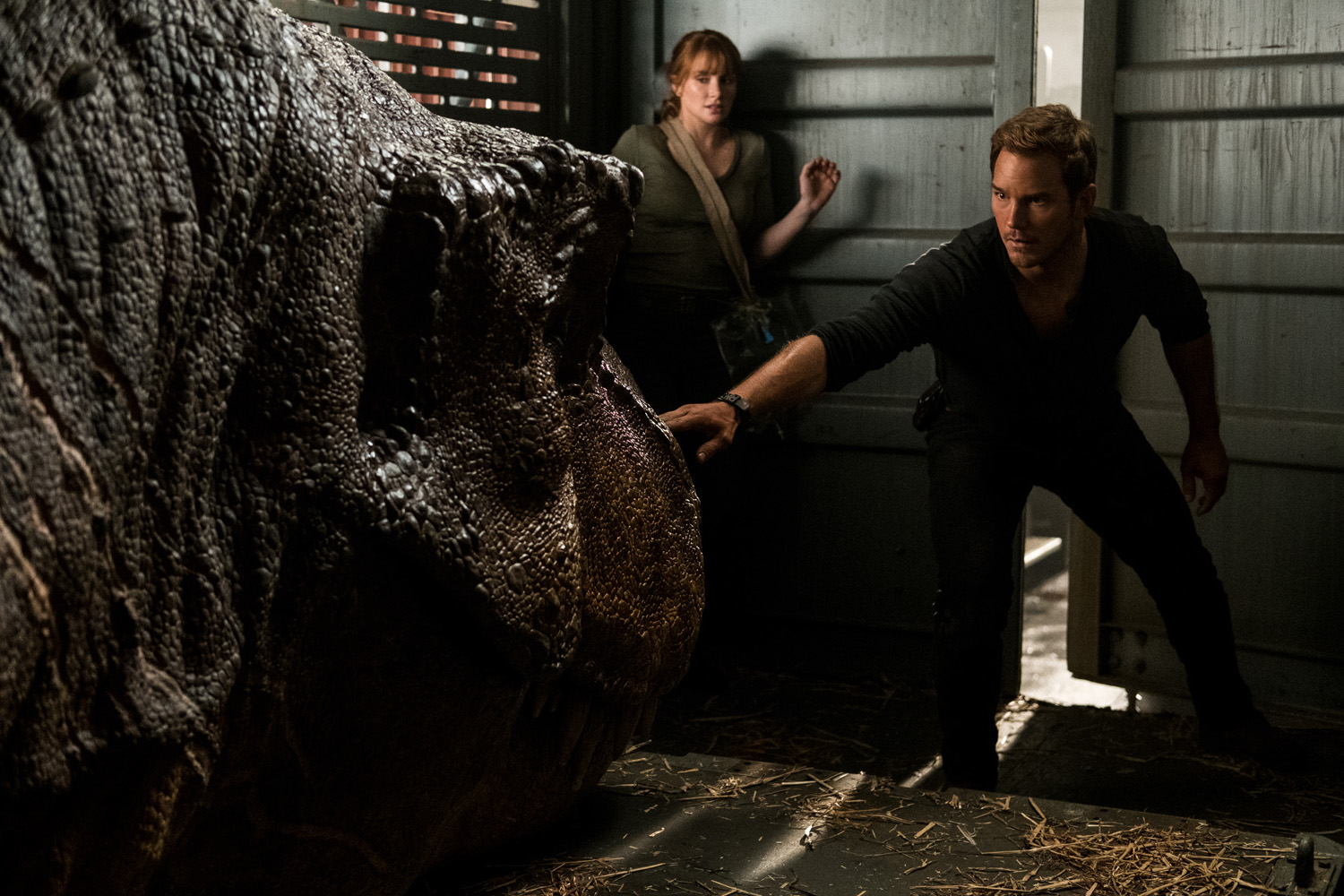 RESCUE. Claire and Owen try to save the dinosaurs from danger.