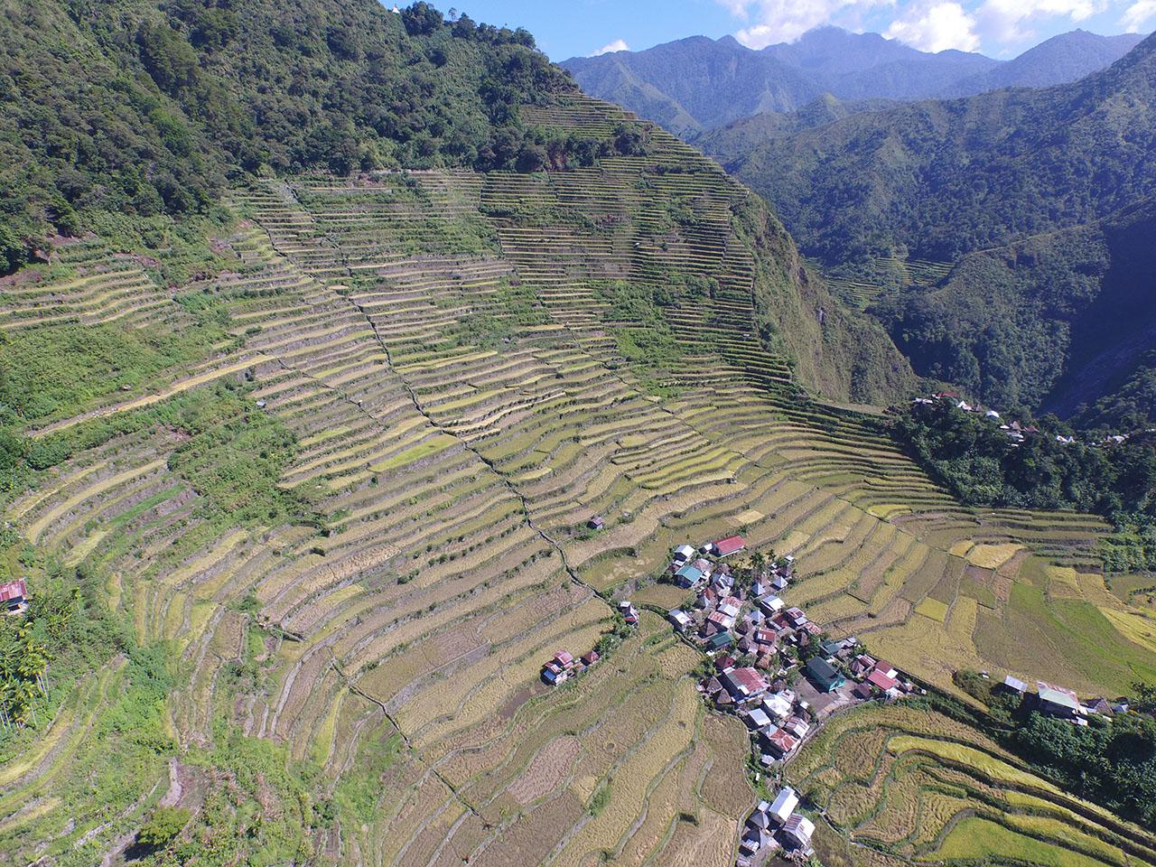 Photo courtesy of the Ifugao Archaeological Project