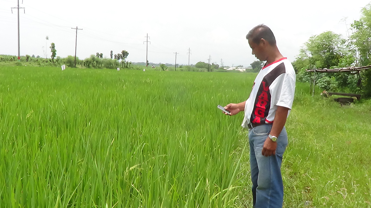 EMPOWERING. Spectres Solutions sees that short message service (SMS) could empower Filipino farmers. All photos from Spectre Solutions