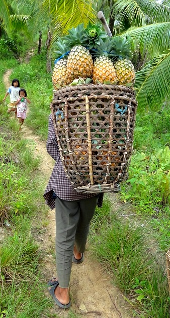 SWEET PINEAPPLES. Jiabong also has sweet, juicy pineapples, arguably one of the country'u0080u0099s best. Photo by Rhea Claire Madarang