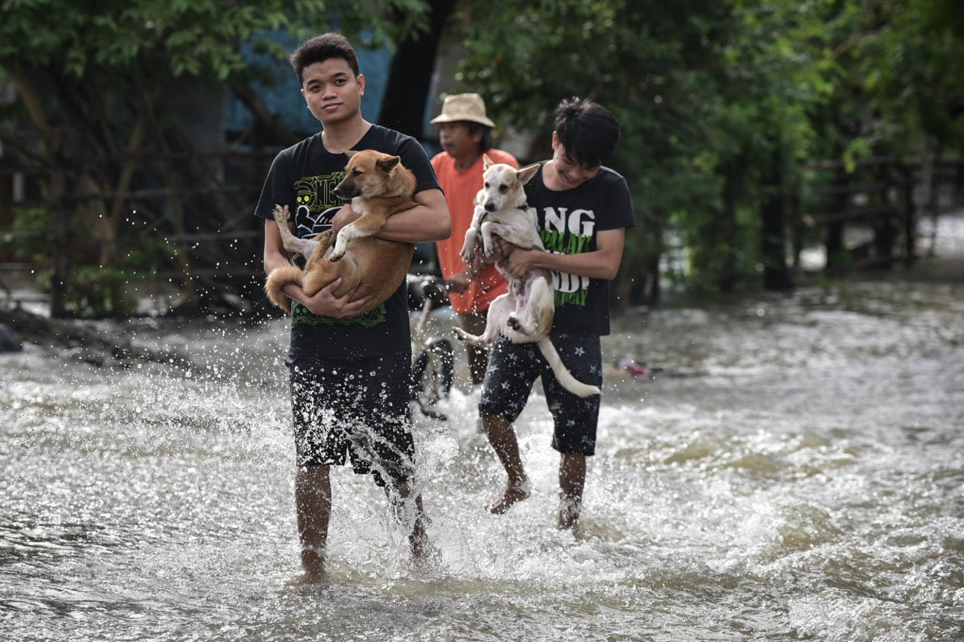 SPARING NO ONE. Not just farmers but animals too were affected by the flooding.