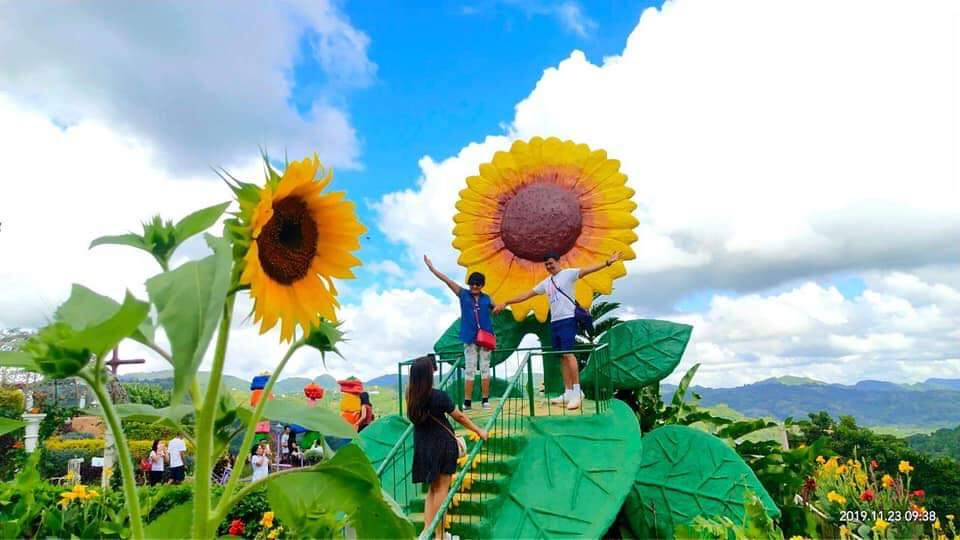 SUNFLOWERS. Both real and prop sunflowers make for interesting photo angles. Photo courtesy of Sirao Garden