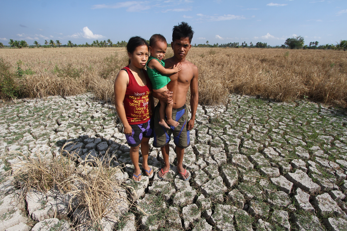 HUNGER. Archie Bello, a farmer from North Cotabato, has very few crops left to harvest from a 2-hectare rice field a month after PAGASA declared a weak El Niu00f1o in the Philippines. File photo by Karlos Manlupig/Greenpeace