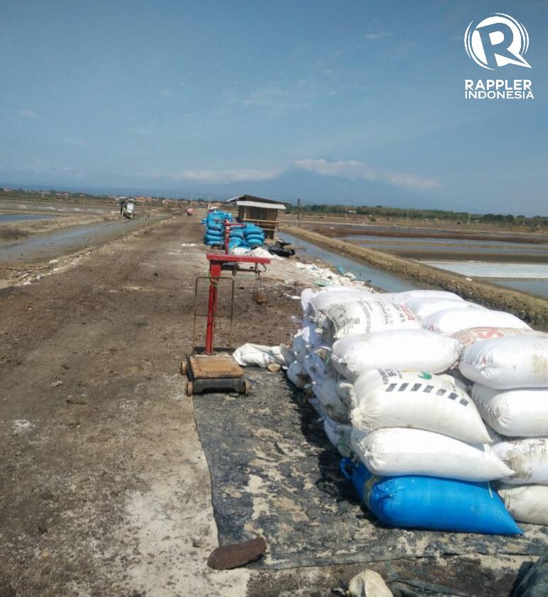 GARAM. Lokasi area pertanian garam di Cirebon. Foto: istimewa