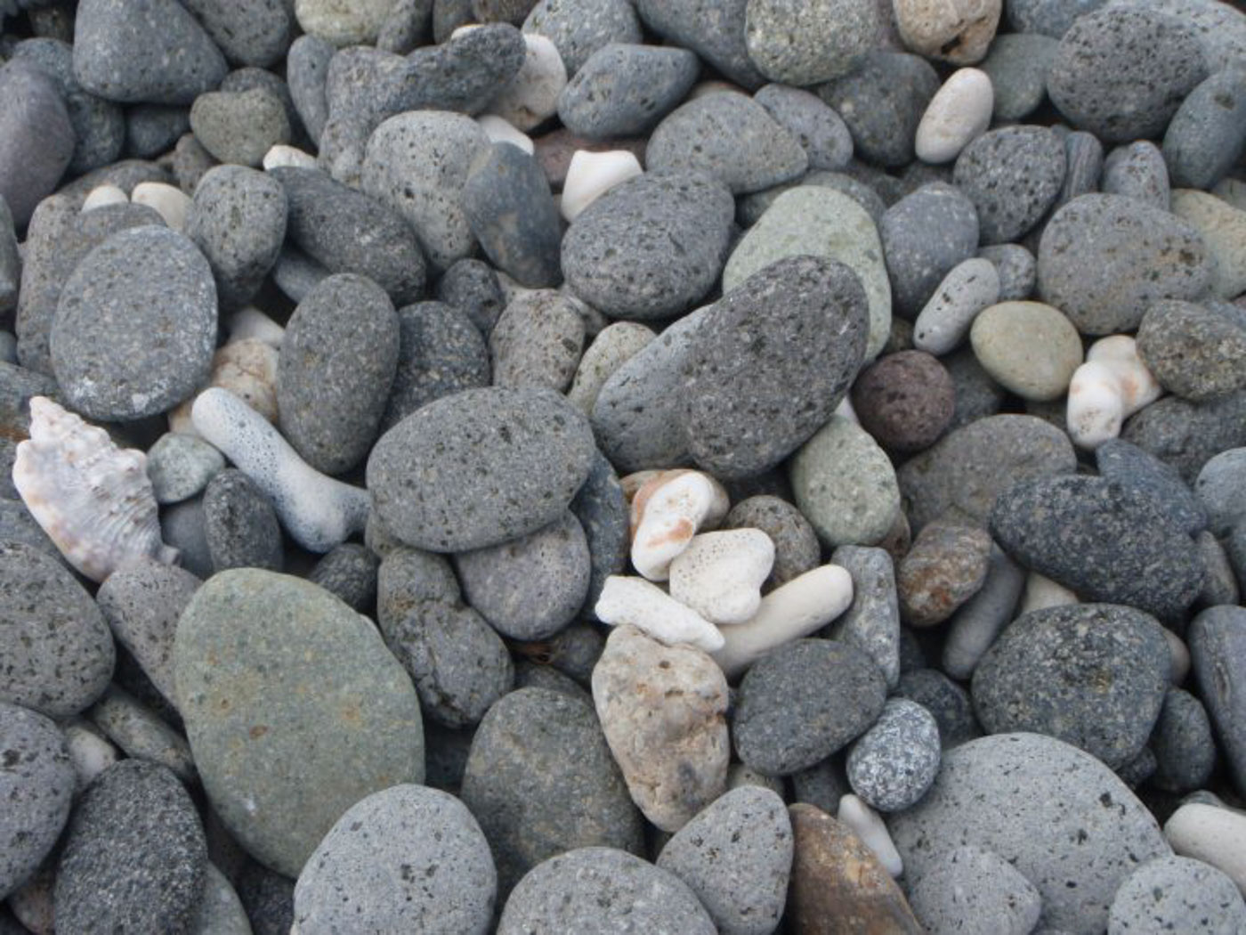 CORAL AND STONES. Malabrigou2019s beach is made of stones and coral. Photo by My Oliveros