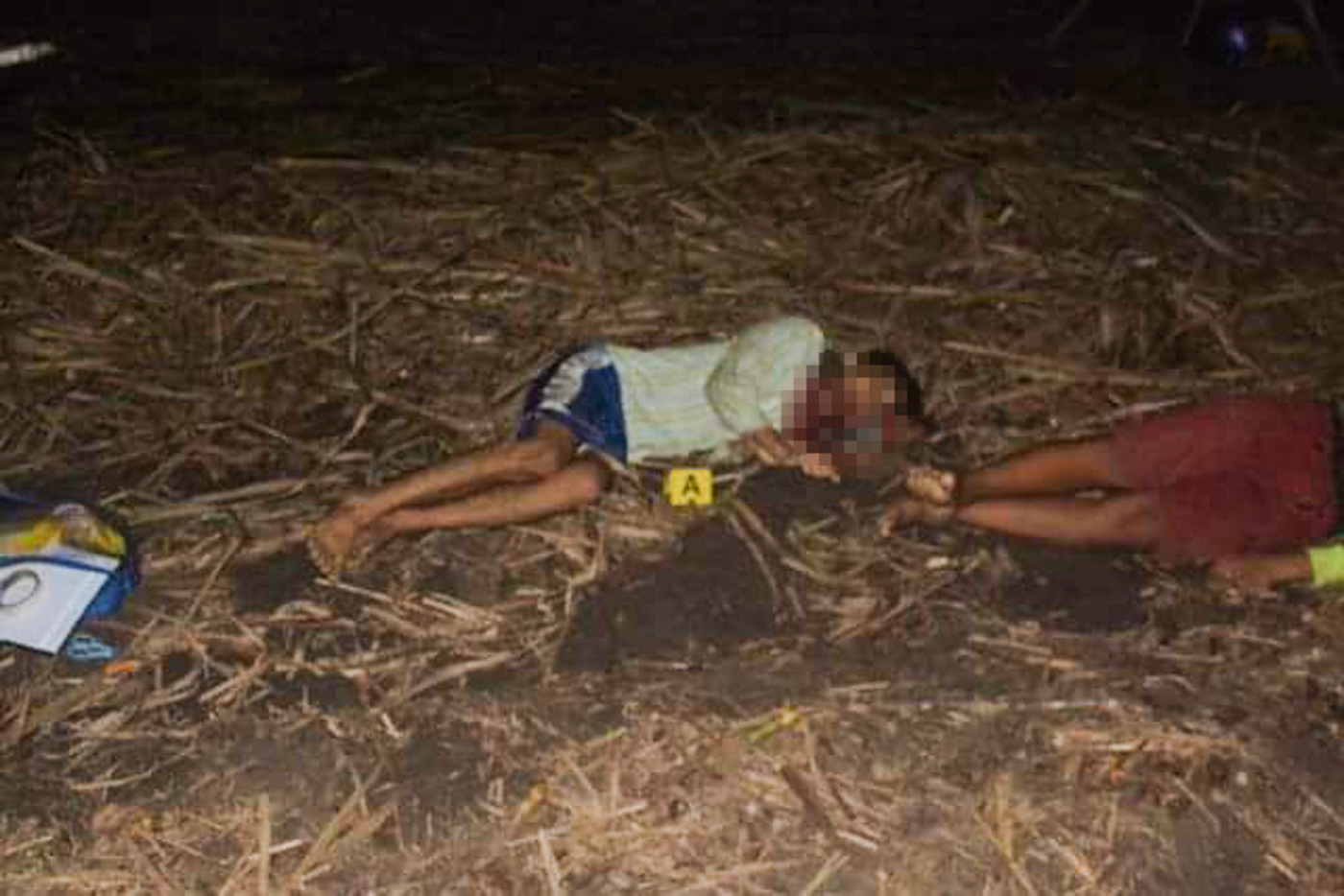 BLOODIED LAND. Gunmen kill 9 farmers occupying a space of Hacienda Nene in Sagay City, Negros Occidental. Photos from PNP Western Visayas