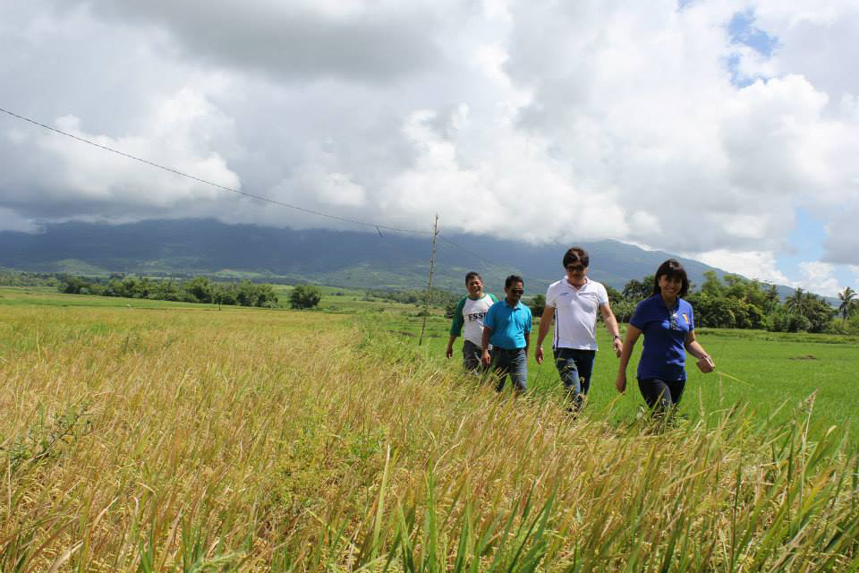 FARMERS' CHAMPION. Leni Robredo is known for often visiting farmers, even if she has to walk long distances. She has initiated several irrigation projects in her district in two years. Photo by Rhaydz Barcia/Rappler