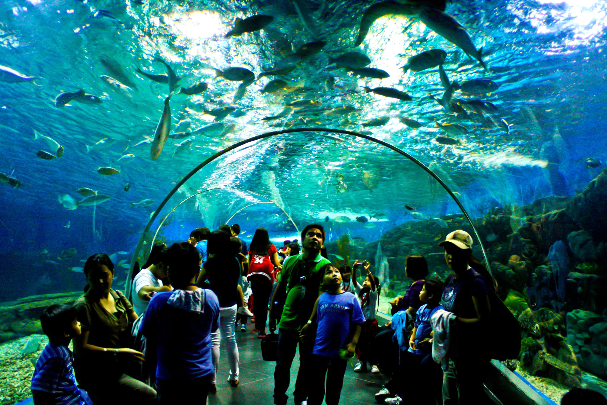 The Manila Ocean Park is also a must-visit for young and old alike. Photo by Louie Lapat