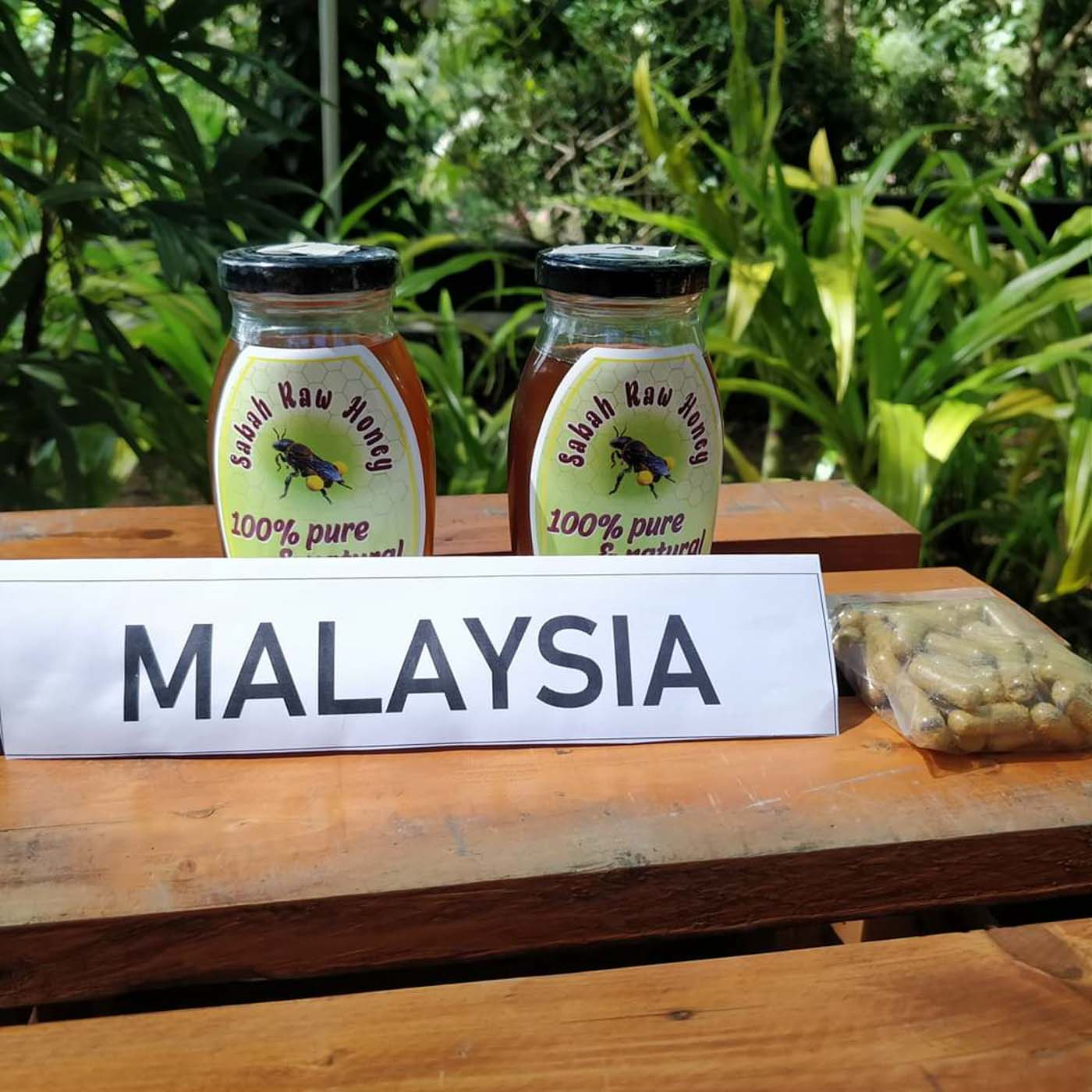 According to a study, Malaysian honeys are pure, strong antioxidants with abundant sources of minerals essential for the human diet, growth, and health. Photo courtesy of Non-TImber Forest Products-Exchange ProgramPhoto courtesy of Non-TImber Forest Products-Exchange Program