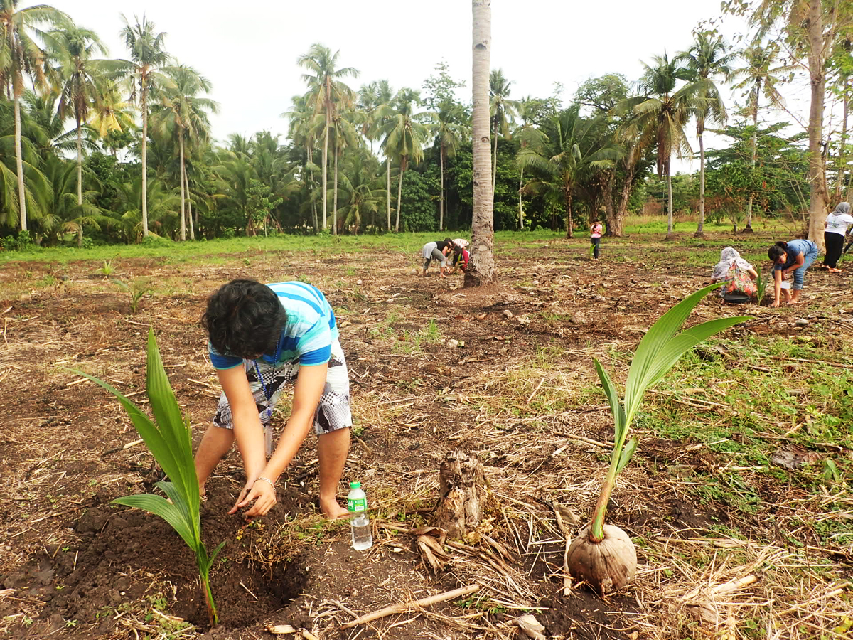 HOPE. Students and teachers from Christian, Muslim, and indigenous faiths plant trees in a place where families were killed by rebels in Pikit, Cotabato.