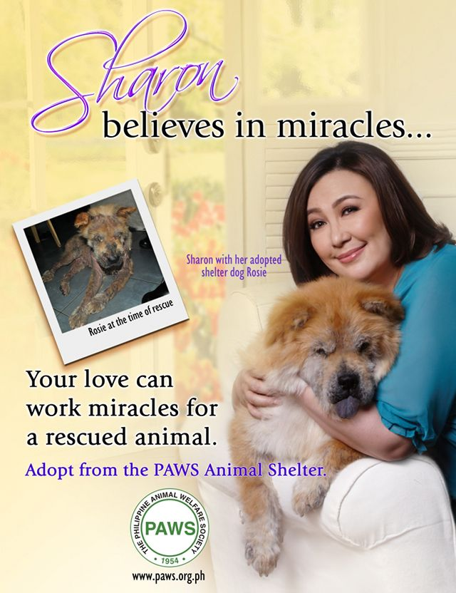 ROSIE TODAY. Sharon Cuneta and Rosie in one of the PAWS posters featuring the Megastar
