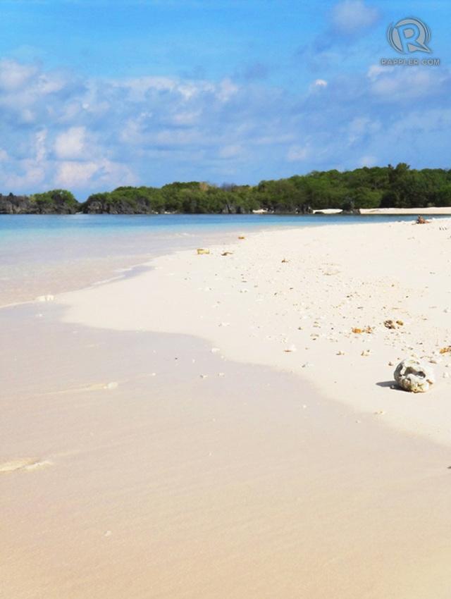 PINKISH, CREAMY BEACH. Apo Islandu2019s long stretch of sand is every beach bummeru2019s dream