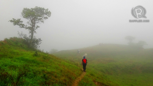 GREEN AND MIST. Rain makes the green stand out at Gulugod Baboy more, and the mist lends a mysterious effect