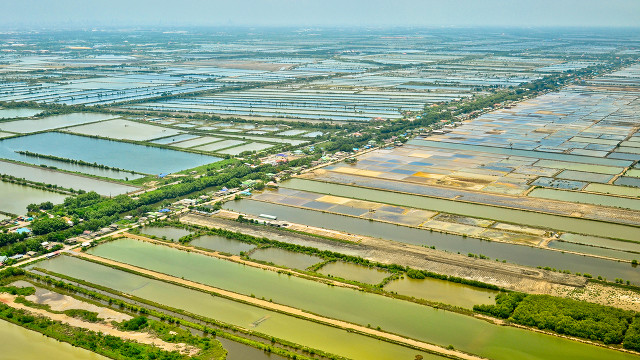 IRRIGATION IS KEY. Well-planned and well-maintained irrigation systems is a key factor in lowering cost of production of Thai rice